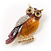 Multicoloured Crystal Owl Brooch