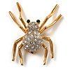 Sparkling Spider Brooch (Gold Tone)