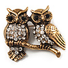 Two Crystal Sitting Owls Brooch (Antique Gold Tone)