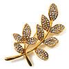 Delicate Diamante Leaf Brooch (Gold Tone Metal)