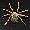 Gold Plated Diamante Spider Brooch