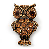 Antique Gold Metal Amber Coloured Crystal Owl Brooch