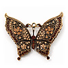 Large Citrine/ Amber Coloured Crystal 'Butterfly' Brooch In Burn Gold Finish - 7.5cm Length