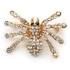 Clear, AB Crystal Spider Brooch In Gold Plating - 37mm Width