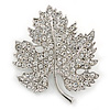Clear Austrian Crystal Maple Leaf Brooch In Rhodium Plating - 40mm L