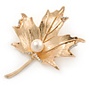 Gold Tone, Clear Crystal Maple Leaf Brooch with Etched Detailing - 55mm L
