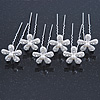 Bridal/ Wedding/ Prom/ Party Set Of 6 Rhodium Plated Crystal Daisy Flower Hair Pins