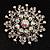 Sparkling AB Crystal Corsage Brooch (Silver Tone)