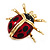 Black/Red Enamel Lady Bug Brooch In Gold Plated Metal - 3cm Length - view 4