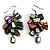 Multicoloured Shell Composite Cluster Dangle Earrings (Silver Tone)